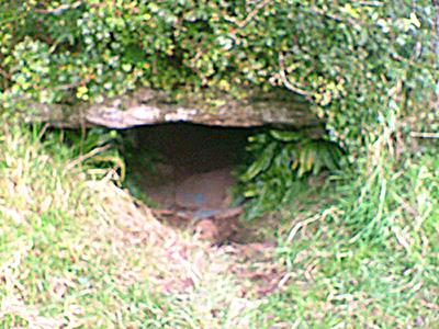 Tzw. Jaskinia kotów – jedno zlicznych miejsc, które – jak wierzono – prowadziło doinnego świata iprzez które dusze zmarłych przybywały naSamhain.